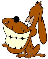 gebit hond
